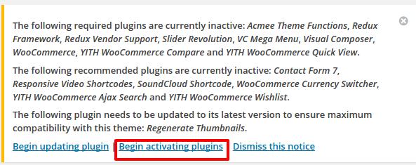 begin-activate-plugins